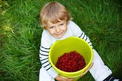 Σμέουρο επιλογής μικρών παιδιών στο οργανικό μόνο αγρόκτημα επιλογών Στοκ φωτογραφία με δικαίωμα ελεύθερης χρήσης