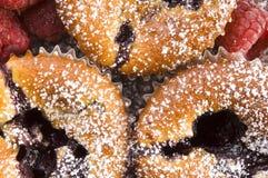 σμέουρο νωπών καρπών μπισκότων Στοκ φωτογραφίες με δικαίωμα ελεύθερης χρήσης