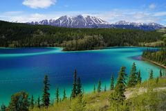 Σμαραγδένιο λίμνη, Yukon, Καναδάς με τα βουνά και δάσος στο υπόβαθρο στοκ εικόνα με δικαίωμα ελεύθερης χρήσης