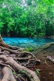 Σμαραγδένια λίμνη σε Krabi στην Ταϊλάνδη Στοκ φωτογραφία με δικαίωμα ελεύθερης χρήσης