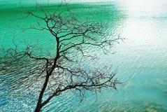 σμαραγδένια λίμνη Στοκ εικόνα με δικαίωμα ελεύθερης χρήσης