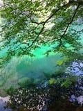 Σμαραγδένια πράσινη λίμνη βουνών στις Άλπεις Στοκ Φωτογραφία