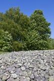 σοβαρή παλαιά πέτρα τύμβων Στοκ Φωτογραφία