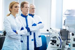 Σοβαροί βιολόγοι που σκέφτονται για την ανάλυση Στοκ Φωτογραφίες