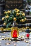 Σοβαροί λαμπτήρας και Yellow Rose Στοκ Εικόνα