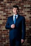 Σοβαρός αρσενικός επιχειρηματίας δικηγόρων στο ακριβές επιχειρησιακό κοστούμι και δεσμός που στέκεται στο εσωτερικό στο καφετί κλ στοκ εικόνα με δικαίωμα ελεύθερης χρήσης