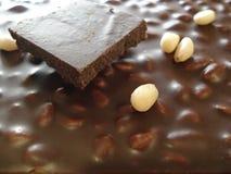 Σοκολάτα με τα καρύδια πεύκων Φέτα της κινηματογράφησης σε πρώτο πλάνο σοκολάτας Στοκ φωτογραφία με δικαίωμα ελεύθερης χρήσης