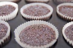 Σοκολάτα cupcakes Στοκ φωτογραφία με δικαίωμα ελεύθερης χρήσης