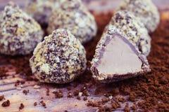 Σοκολάτες και κακάο στοκ φωτογραφίες