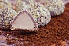 Σοκολάτες και κακάο στοκ φωτογραφία με δικαίωμα ελεύθερης χρήσης