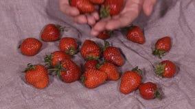 Σοκολάτα επάνω στις φράουλες, σε αργή κίνηση HD φιλμ μικρού μήκους
