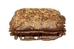 σοκολάτα κέικ εύγευστη Στοκ Εικόνα