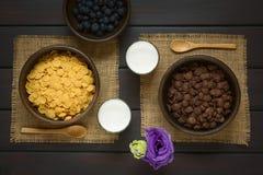 Σοκολάτα και απλές νιφάδες καλαμποκιού Στοκ φωτογραφία με δικαίωμα ελεύθερης χρήσης