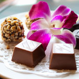 Σοκολάτα και ορχιδέα στην Πράγα στοκ φωτογραφία με δικαίωμα ελεύθερης χρήσης