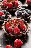 Σοκολάτα ξινή με τα φρέσκα σμέουρα Στοκ φωτογραφίες με δικαίωμα ελεύθερης χρήσης