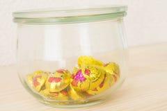 Σοκολάτα παπιών Στοκ εικόνα με δικαίωμα ελεύθερης χρήσης