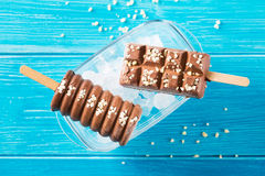 Σοκολάτα δύο popsicles με τα καρύδια Στοκ φωτογραφία με δικαίωμα ελεύθερης χρήσης