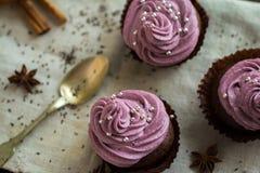 Σοκολάτα cupcakes που διακοσμείται με την κρέμα μούρων Στοκ Φωτογραφίες