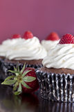 Σοκολάτα Cupcakes που ολοκληρώνεται με τις φράουλες Στοκ Εικόνες