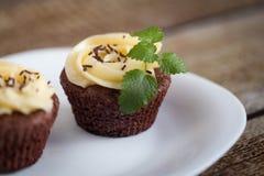Σοκολάτα cupcakes (browny) Στοκ Φωτογραφία