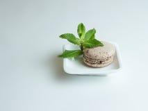 Σοκολάτα macaron σε ένα άσπρο πιάτο Στοκ Φωτογραφίες