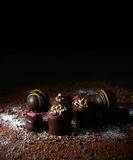 Σοκολάτες ΙΙ ηδύποτου στοκ φωτογραφία με δικαίωμα ελεύθερης χρήσης