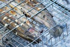 Σολομός ουράνιων τόξων στα καρυκεύματα που τηγανίζονται στον πάσσαλο στη σχάρα στοκ εικόνα