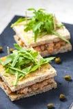 σολομός tartare με το πράσινο ruccola στοκ φωτογραφίες