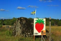Σουηδία τοπική αγορά της φράουλας Στοκ Φωτογραφίες