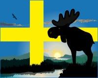 Σουηδικές άλκες Στοκ εικόνα με δικαίωμα ελεύθερης χρήσης