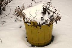 Σουηδικός κίτρινος κάδος στο χιόνι Στοκ Εικόνες