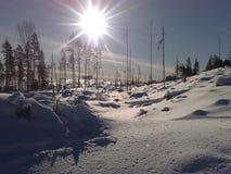 Σουηδικός χειμώνας Στοκ εικόνα με δικαίωμα ελεύθερης χρήσης