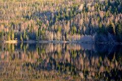 Σουηδικό δάσος και η αντανάκλασή του κατά μήκος του ποταμού Στοκ Φωτογραφίες