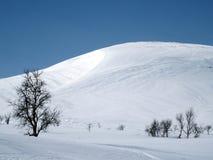 Σουηδικό βουνό Στοκ φωτογραφία με δικαίωμα ελεύθερης χρήσης