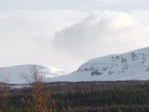 Σουηδικό βουνό Στοκ Εικόνες