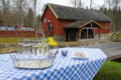 Σουηδικό ευπρόσδεκτο δώρο Στοκ φωτογραφία με δικαίωμα ελεύθερης χρήσης