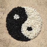 Σουσάμι Yin και σύμβολο Yang Στοκ φωτογραφίες με δικαίωμα ελεύθερης χρήσης