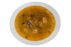 Σούπα άσπρο στενό σε έναν επάνω πιάτων Στοκ Εικόνες