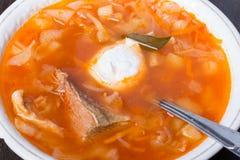 Σούπα λάχανων ρωσικός παραδοσιακός κ&omic Στοκ Εικόνα