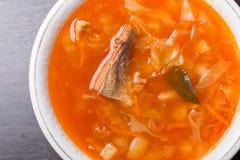 Σούπα λάχανων ρωσικός παραδοσιακός κ&omic Στοκ φωτογραφίες με δικαίωμα ελεύθερης χρήσης