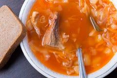 Σούπα λάχανων ρωσικός παραδοσιακός κ&omic Στοκ Εικόνες