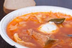 Σούπα λάχανων ρωσικός παραδοσιακός κ&omic Στοκ Φωτογραφίες