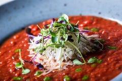 Σούπα λαχανικό ντοματών σούπας κύπελλων ιταλική ντομάτα σούπας Μεσογειακή σούπα ντοματών Ιταλικό cuicsine ιταλική μεσογειακή μοτσ Στοκ Εικόνα