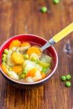 Σούπα λαχανικών άνοιξη στοκ φωτογραφία