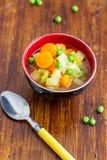 Σούπα λαχανικών άνοιξη στοκ εικόνα