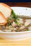 σούπα βόειου κρέατος κριθαριού Στοκ φωτογραφία με δικαίωμα ελεύθερης χρήσης