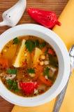 Σούπα βόειου κρέατος με τα λαχανικά σε ένα άσπρο πιάτο Στοκ φωτογραφίες με δικαίωμα ελεύθερης χρήσης