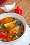 Σούπα βόειου κρέατος με τα λαχανικά σε ένα άσπρο πιάτο Στοκ Εικόνες