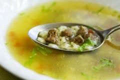 Σούπα βόειου κρέατος Στοκ φωτογραφίες με δικαίωμα ελεύθερης χρήσης