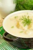 Σούπα γάλακτος με το κουνουπίδι στοκ εικόνες με δικαίωμα ελεύθερης χρήσης